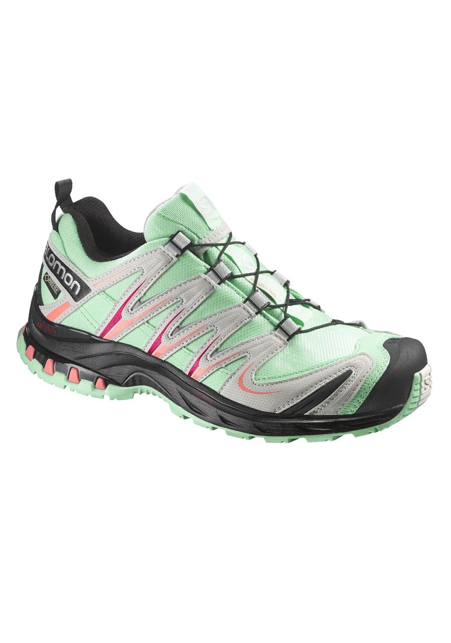 3c907b22e Dámske bežecké topánky SALOMON XA PRO 3D GTX GL | David sport Harrachov